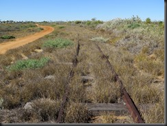 170513 009 Carnarvon Tramway Track
