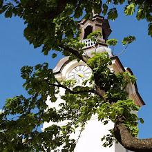 Popotniški spomladanski izlet, Istra 2007 - P0146272.JPG