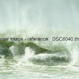 _DSC8040.thumb.jpg