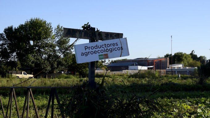 Productores Agroecologico analizan vender en las veredas de grandes industrias