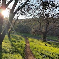Skyline Wilderness Park's profile photo