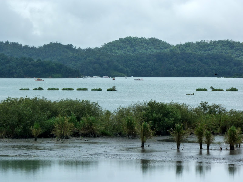 PULI . De Puli a Sun Moon Lake et un village Thao .J 6 - P1150768.JPG
