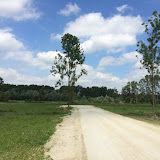 2015 - Scouting Landgoed - IMG_7897.JPG