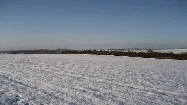 Woodhurst In the Snow - February 2009 - picture19.jpg