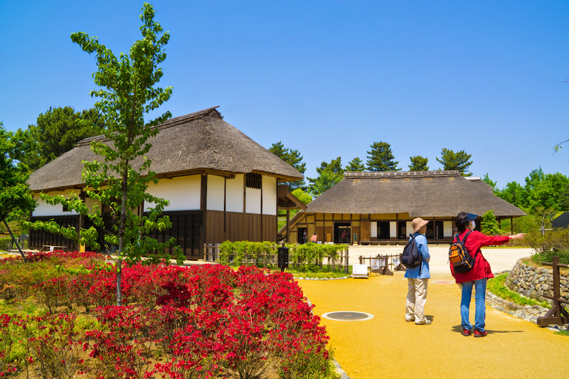 Showa Kinen Park Komorebi Village photo1