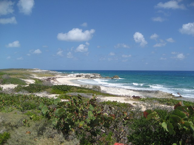 beach facing Exuma Sound