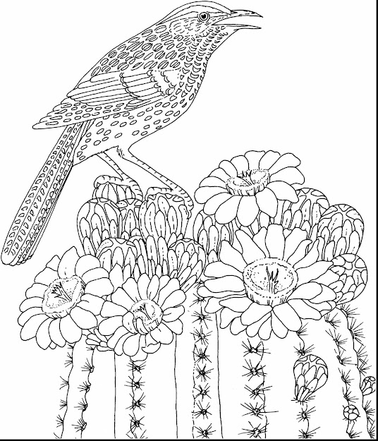Surprising Hard Coloring Pages Flowers Adults With Hard Coloring Pages For  Adults And Extremely Hard Coloring