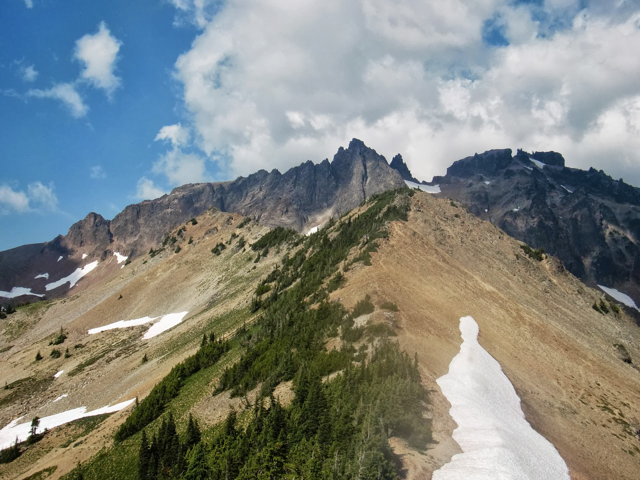 At the top of Cispus Pass