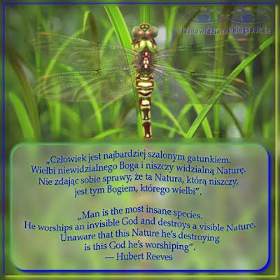 Czlowiek-Jest-Najbardziej-Szalonym-Gatunkiem--Wielbi-Niewidzialnego-Boga-I-Niszczy-Widzialna-Nature--Hubert Reeves