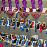 Fort Bend County Fair 2013 - 115_7972.JPG