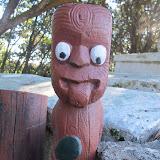 Kiwi du nord, dernier acte !
