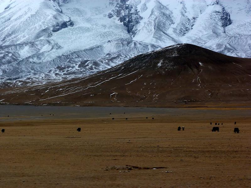 XINJIANG. Karakoram Highway, lune des plus haute route au monde, en passant a 4400 m - P1280655.JPG