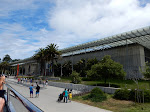 Outside the California Academy of Sciences Museum
