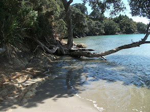 Photo: Tawhitokino beach entrance at very high tide (Approximately 4 m)