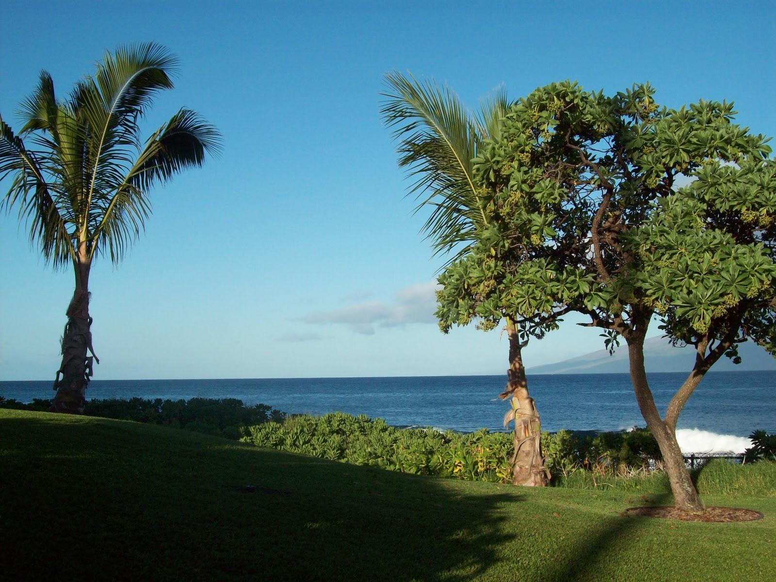 Hawaii Day 6 - 114_1704.JPG