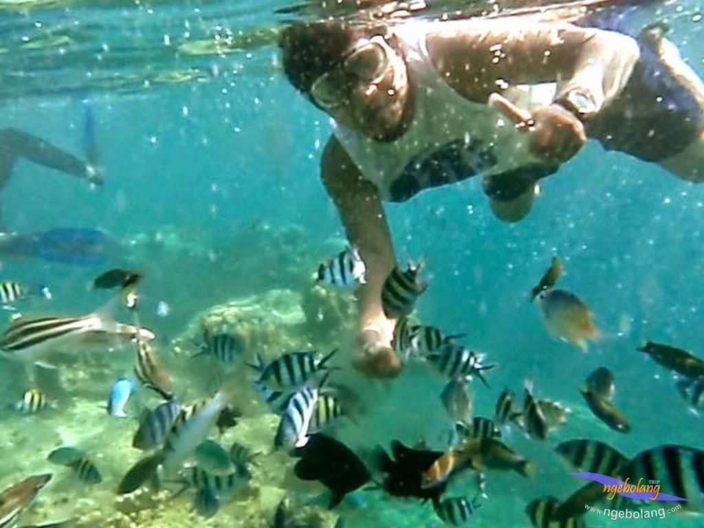 explore-pulau-pramuka-olp-15-16-06-2013-13