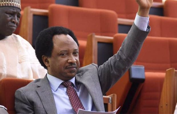 JAMB is jamming the future of Nigerian youths – Senator Shehu Sani