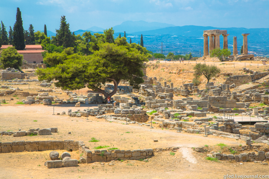 Что такое полис в древней греции