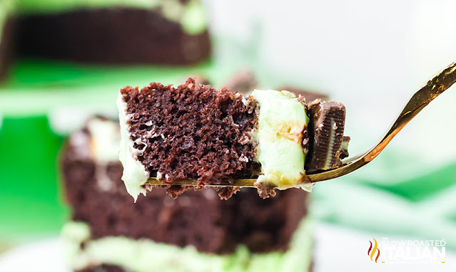 bite of chocolate cake with mint