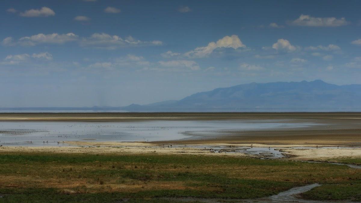 TanzaniaDSC02612.jpg