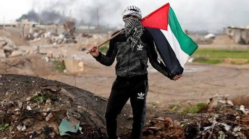 Sekjen PBB: Pasukan Baru Sebagai Opsi Melindungi Palestina