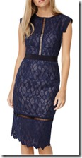 Damsel in a Dress Navy Lace Dress