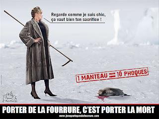 Les animaux tués pour faire des vêtements
