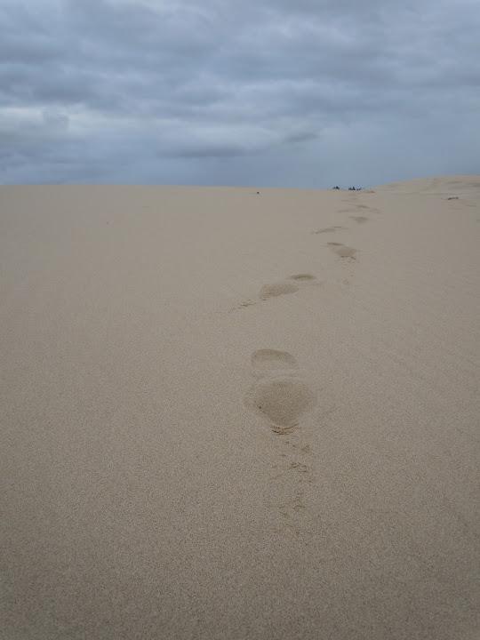 Umpqua Dunes