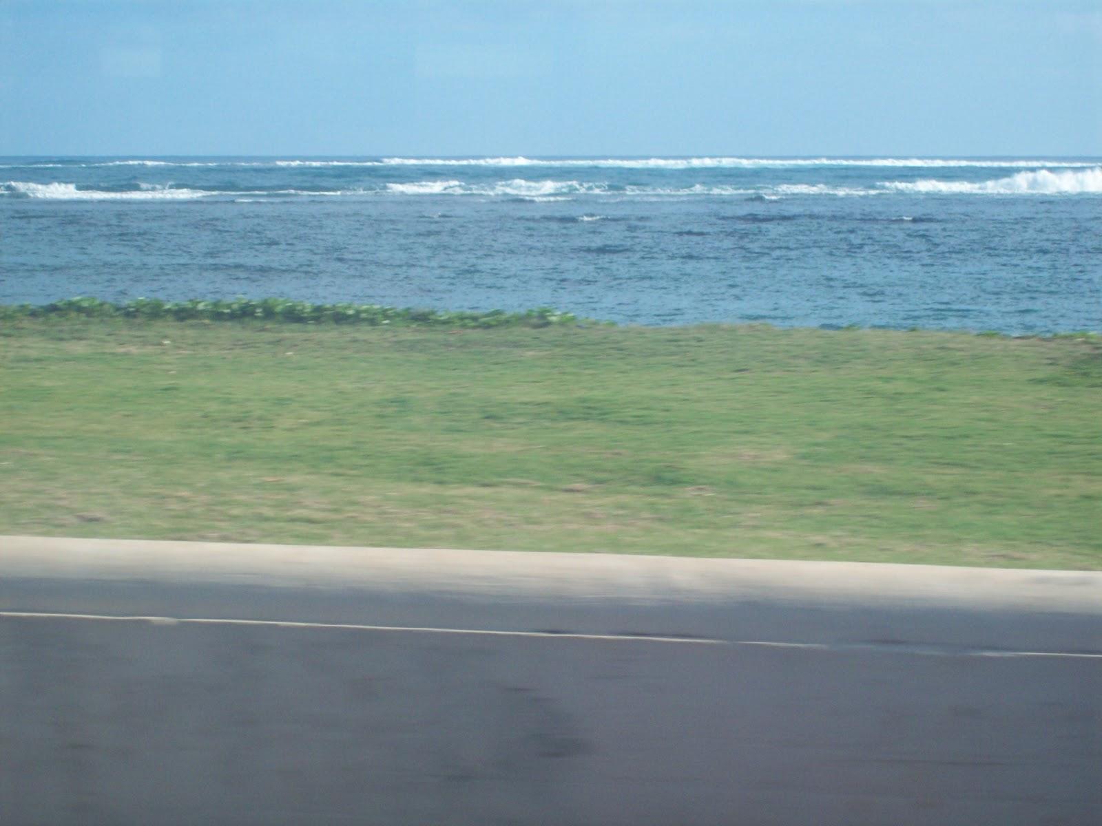 Hawaii Day 3 - 114_1065.JPG