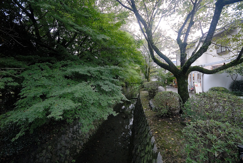 Philosopher's Path. Kyoto University Yoshida Campus. Kyoto