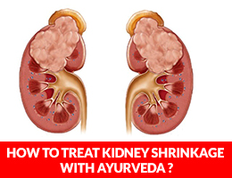 How To Treat Kidney Shrinkage With Ayurveda?