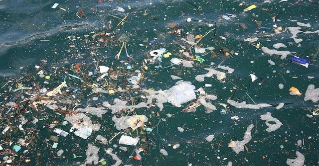 Legambiente, allarme inquinamento: la cattiva depurazione minaccia i mari e i laghi italiani
