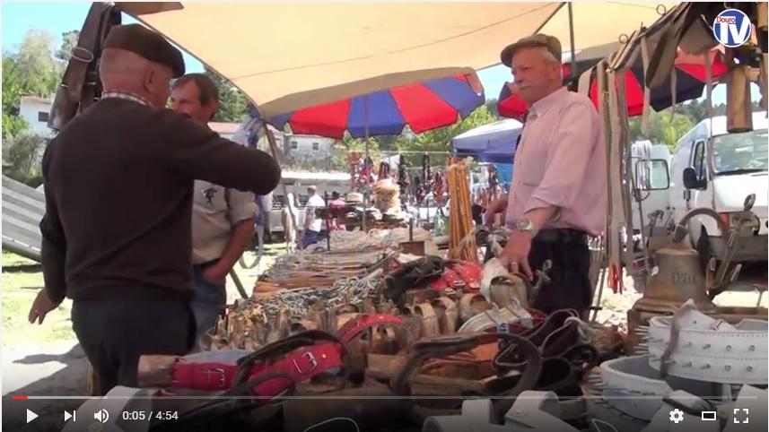 Vídeo - Tradicional Festa Equestre do 3 de Maio em Lamego - 2016