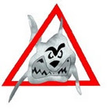 logo squalo.jpg