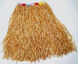hula%2Bskirt.jpg