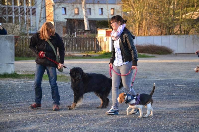 On Tour in Wunsiedel - DSC_0044.JPG