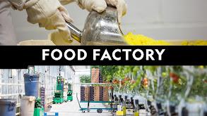 Food Factory thumbnail