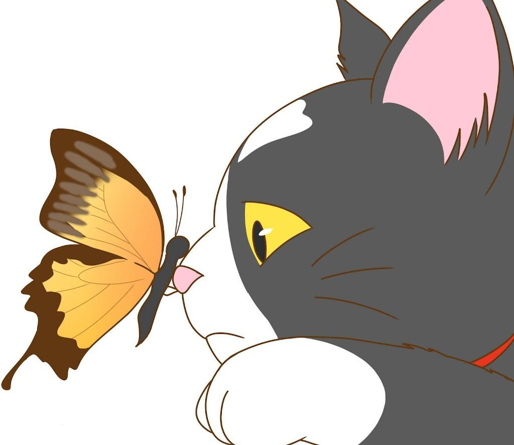 猫の鼻にとまる蝶