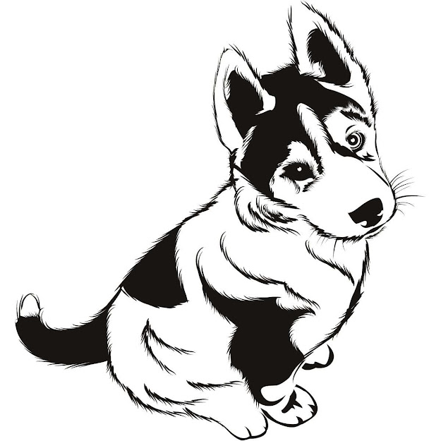 Husky Puppies Colouring Pages