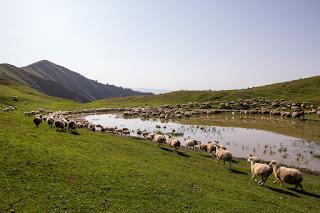 Zagatala: Tak tohle je Ázerbájdžán (2. část) Ázerbájdžán Cestopisy Kavkaz