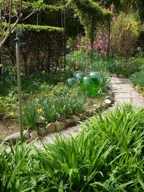 giardino naturale 2012foto tutte insieme del mio angolo