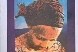 JAMB 2021 English Novel : Download The Life Changer by Khadija Abubakar Jalli In PDF Format