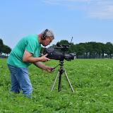 Dutch Harvest Field update #3
