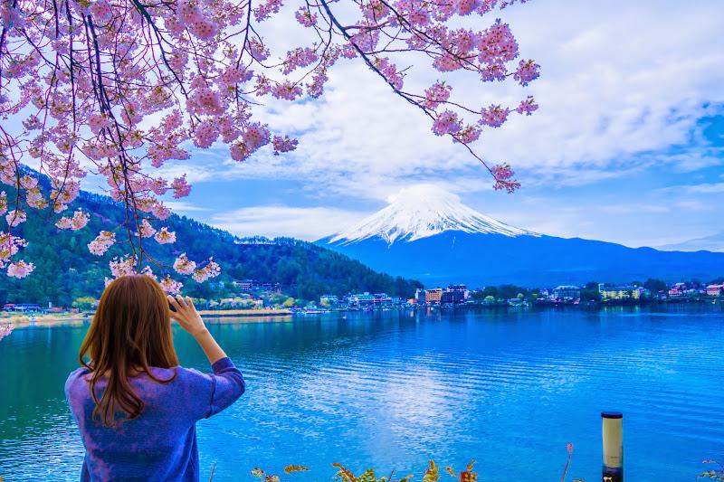 Lake kawaguchiko, cherry blossoms 9