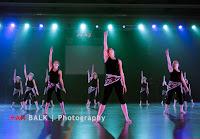 Han Balk Voorster Dansdag 2016-3759-2.jpg