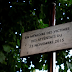 Paris ramps up security as jihadist attacks trial starts