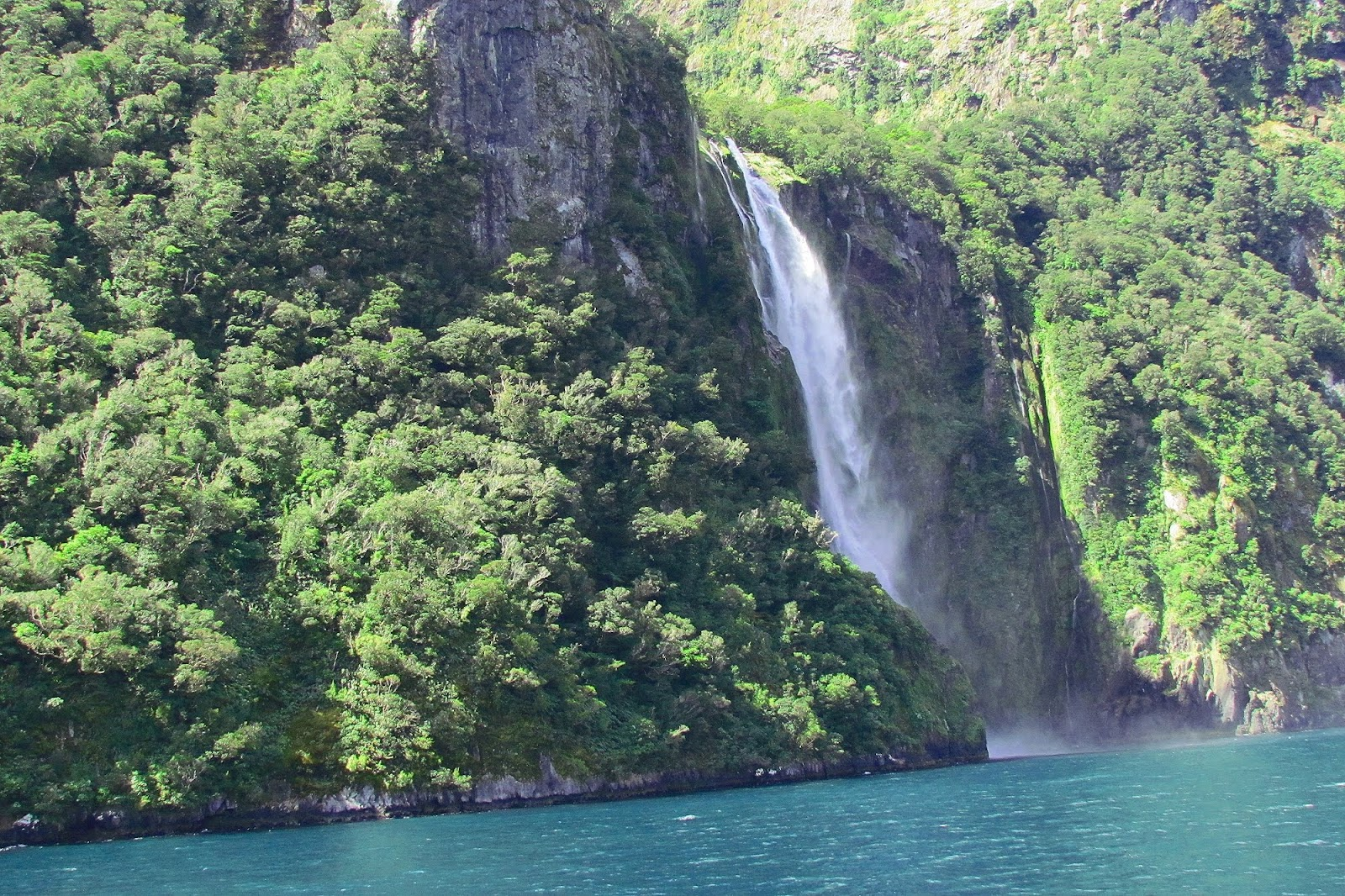 Milford Sound Trees and Waterfall.jpg