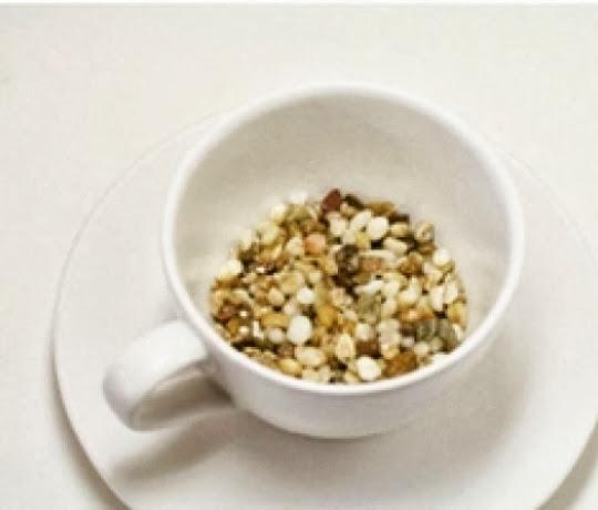 chau+hoa+5 Cách trồng chậu cây nhỏ xinh từ hạt thanh long
