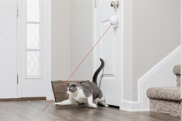 PetSafe Dancing Dot