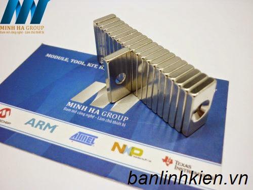 Nam Châm F20x10+3MM NC002